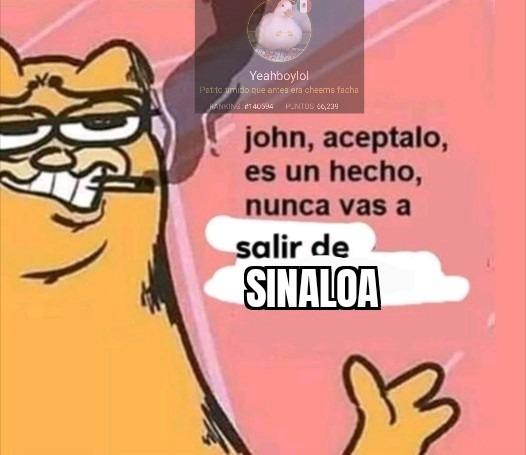 Momo mexichango - meme