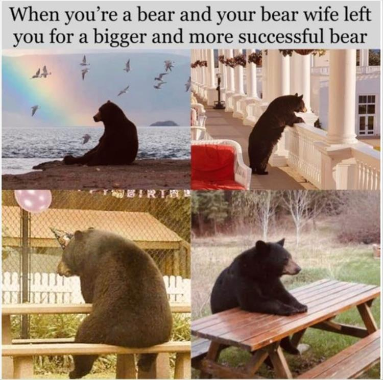Not my spirit animal, but my drinking buddy animal. I tell him how much I hate my life and he tells me how much he hates forest fires. That and wearing jeans with a funny hat and lugging a shovel with him everywhere he goes. - meme