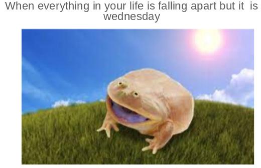 it is Wednesday  my dudes - meme