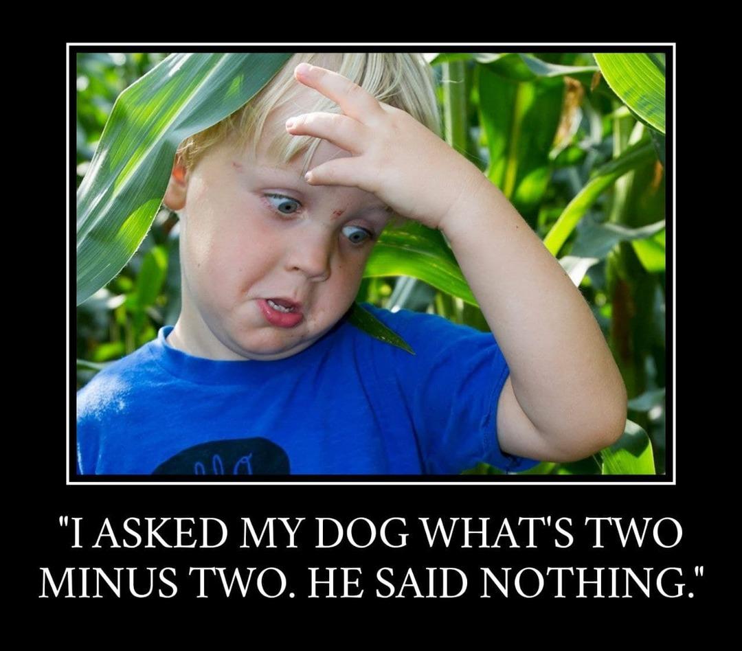 Dad jokes are so confusing - meme