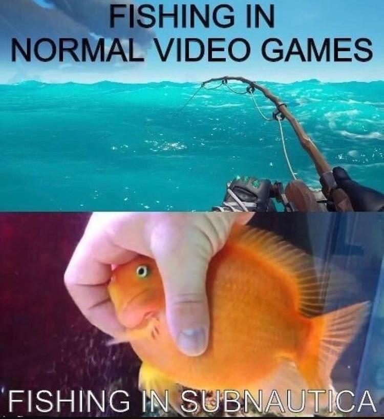 grab that fish - meme