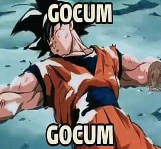 GOCUM - meme
