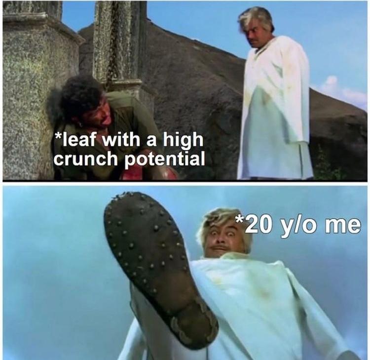 crunch - meme