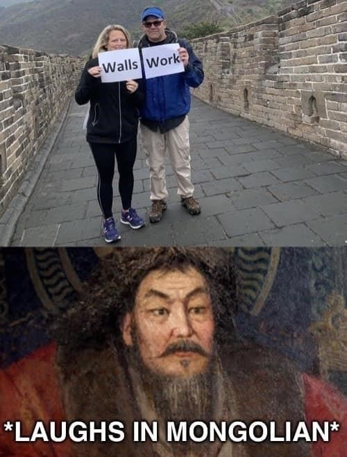 Walls......are made for crossing - meme