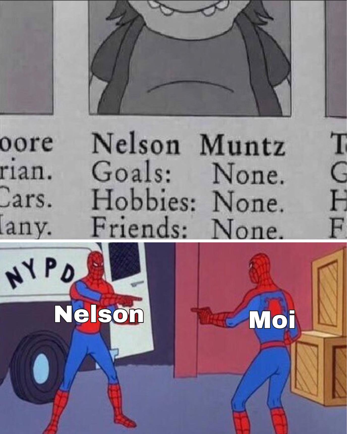 nelson, N-Z - meme