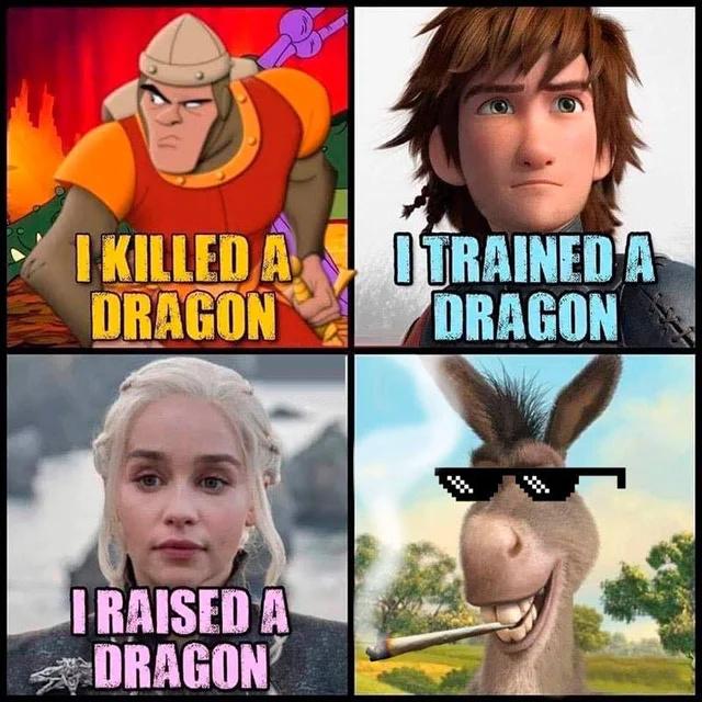 I FUCKED A DRAGON. - meme