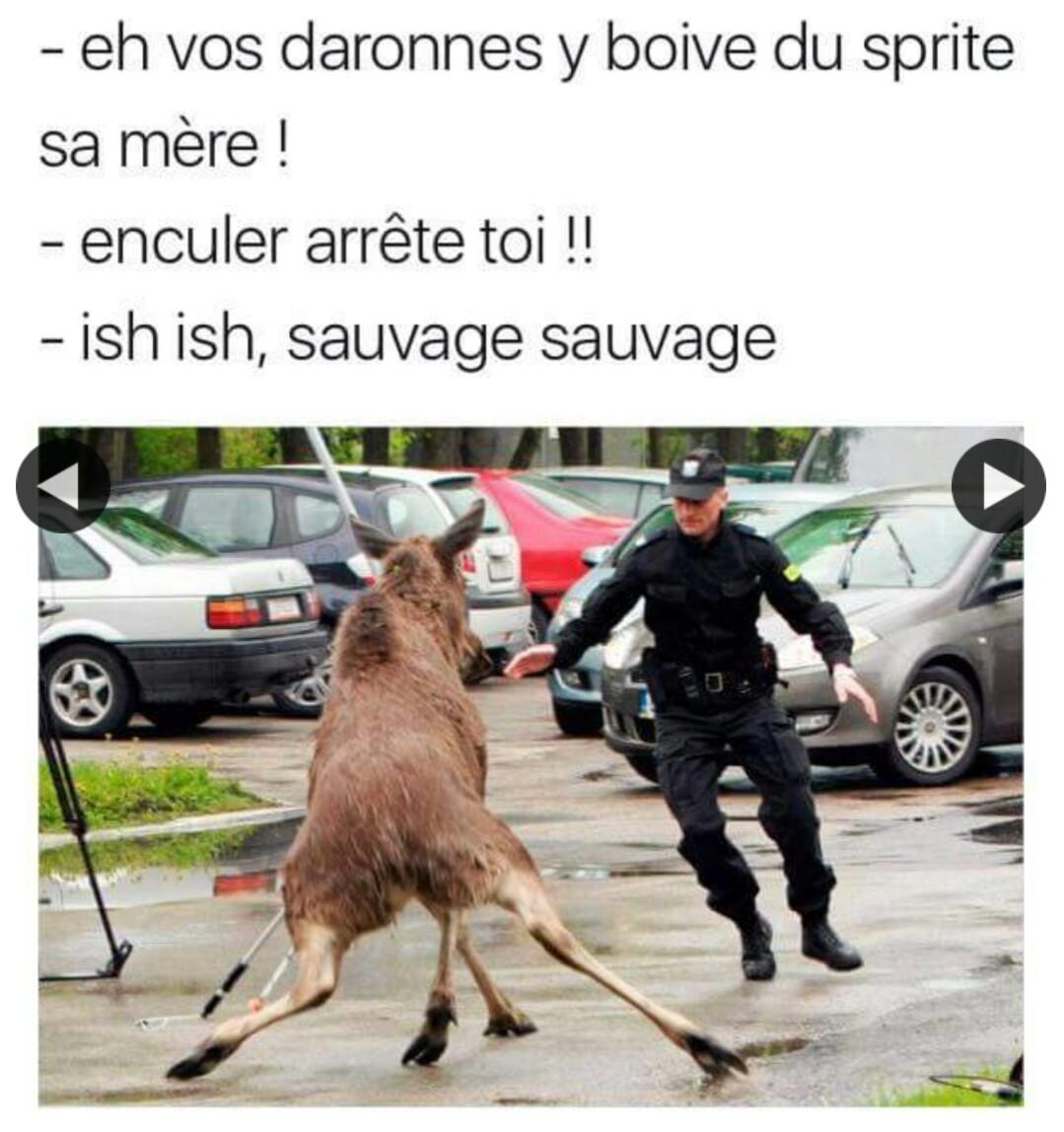 243 comme Yannick Bolasie - meme