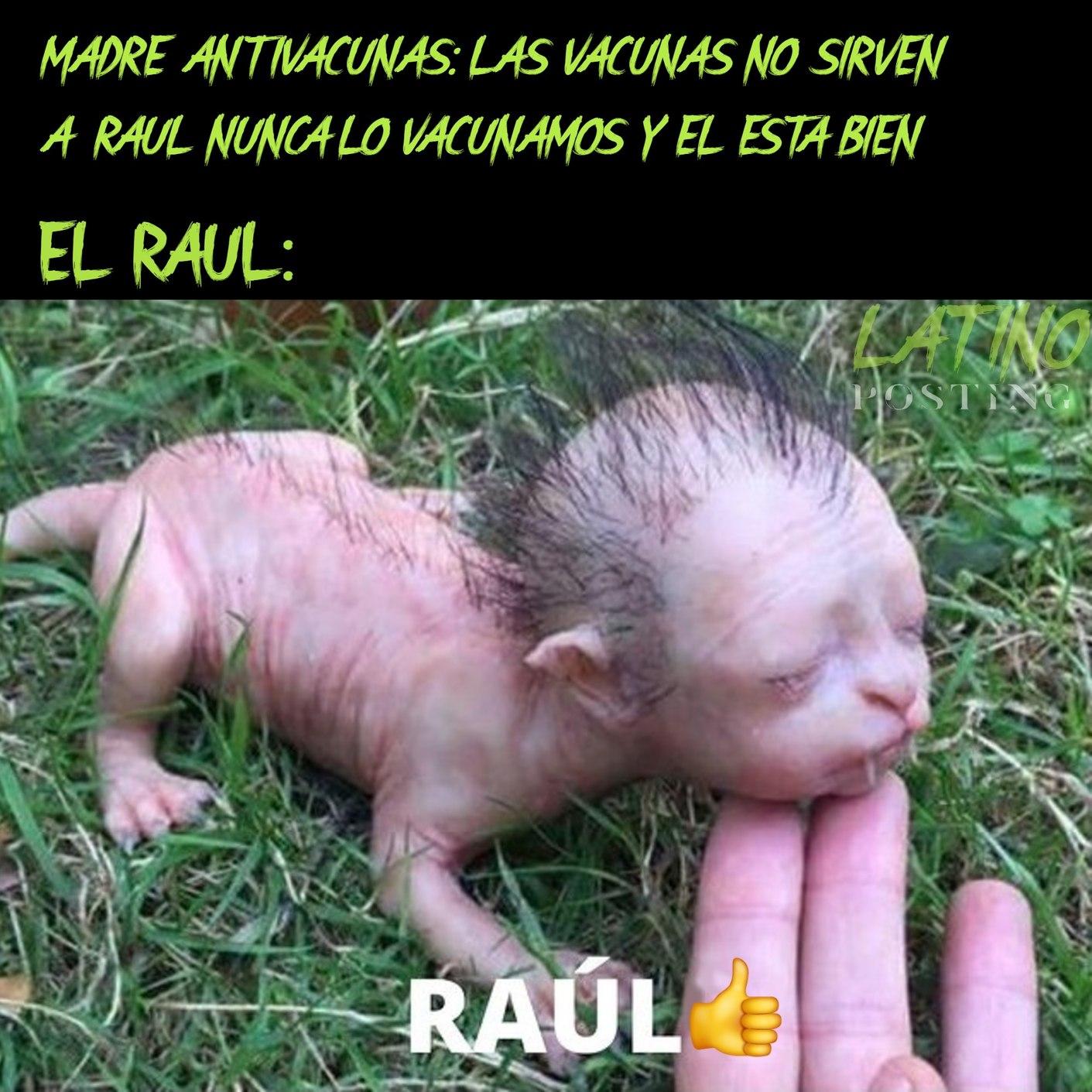 RAUL TA JOYA - meme