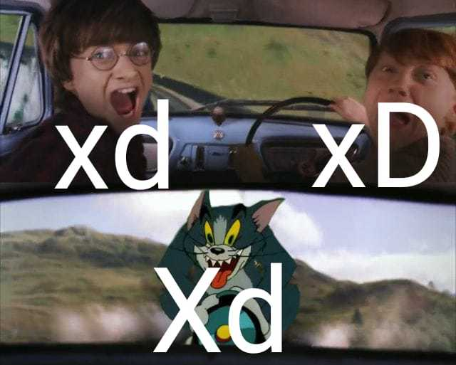 dY/dX - meme