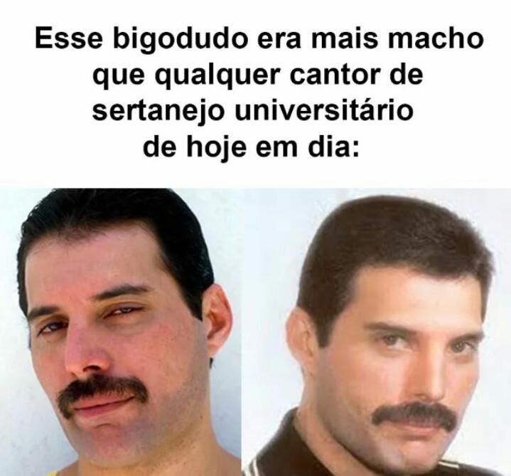 Freddie é mais macho que homossexual por ai - meme