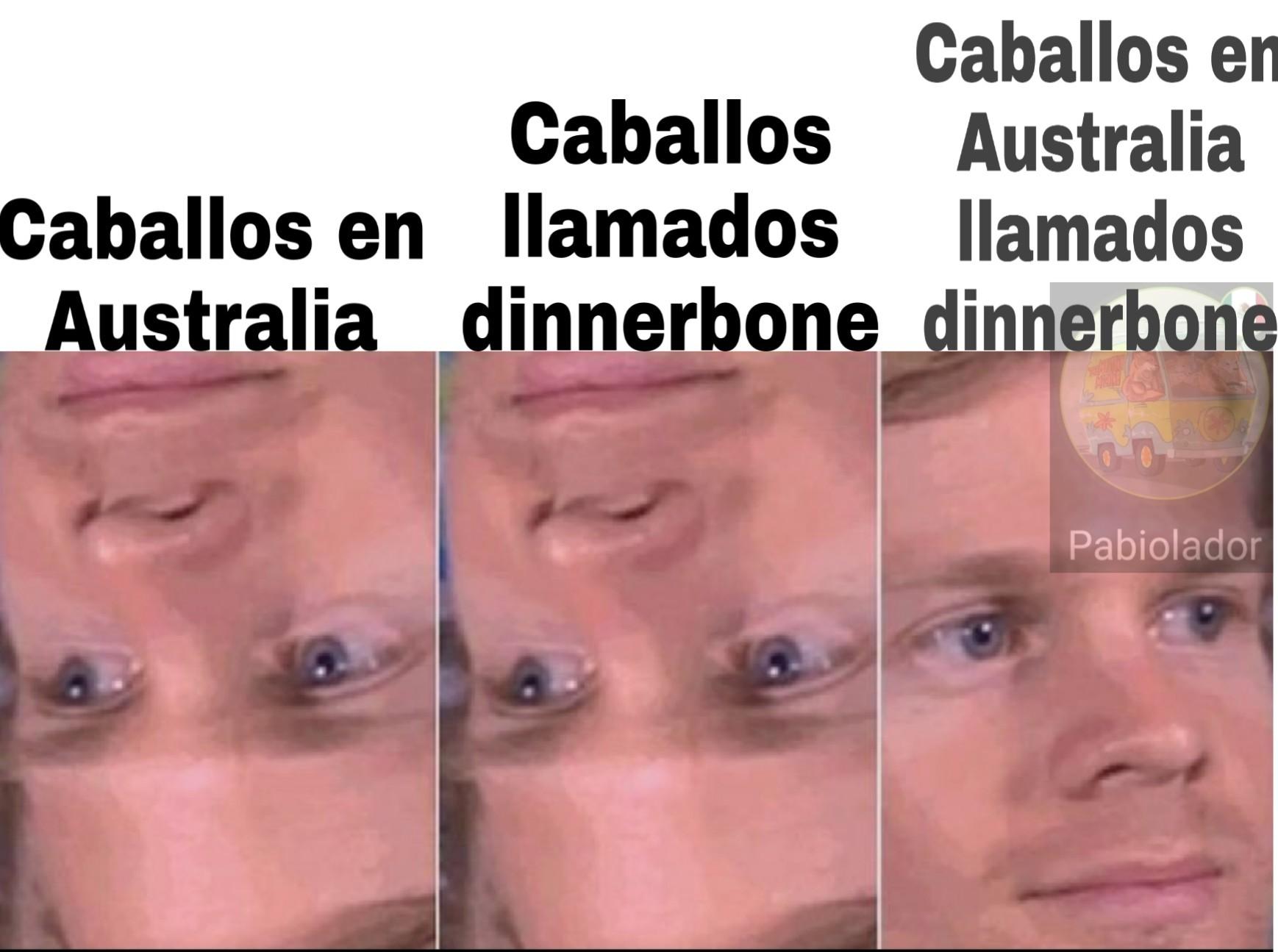 Dinnerbone - meme