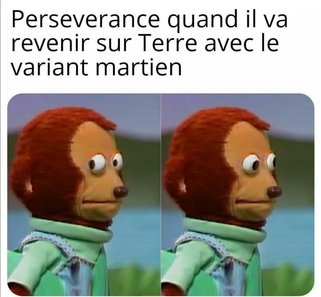Persévérance est le nom du robot envoyé sur Mars - meme