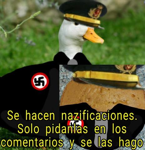 Se hacen nazificaciones - meme