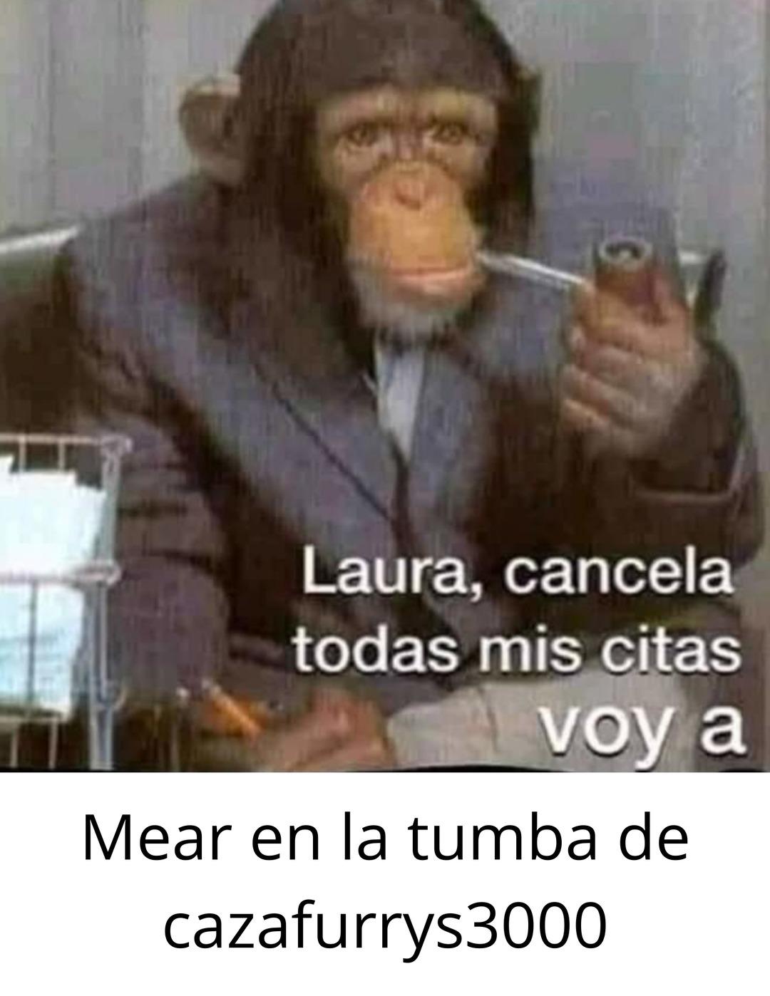 Cazafurrys3000 ¿?-2021 - meme