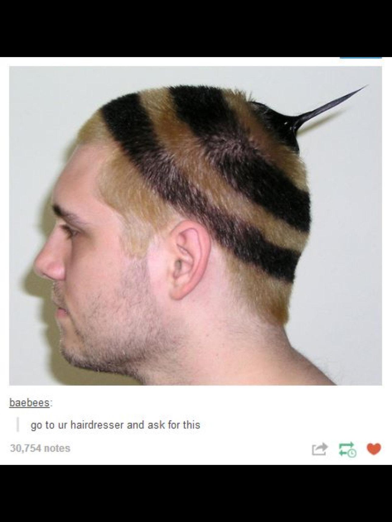 The beest hair - meme
