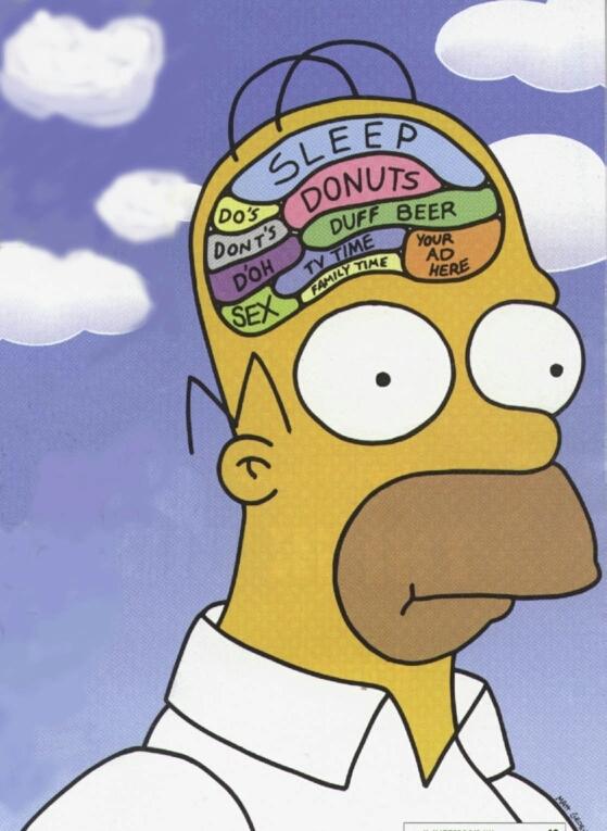 Homer's Brain - meme