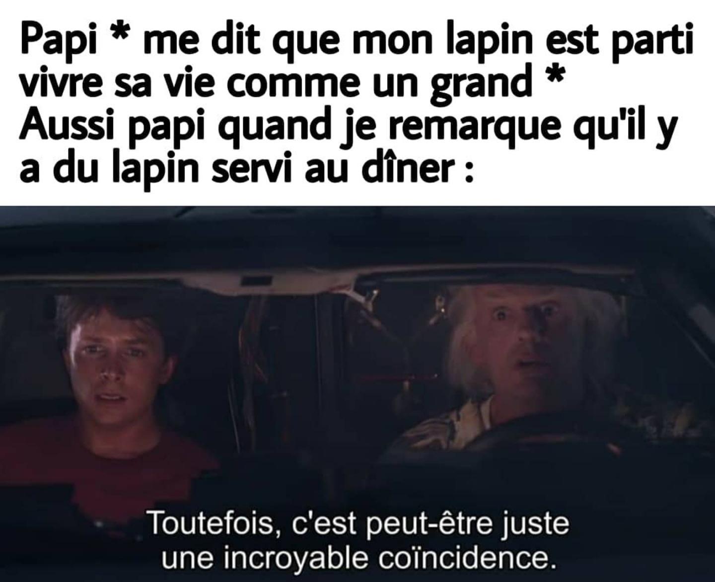 Lapinou à la - meme