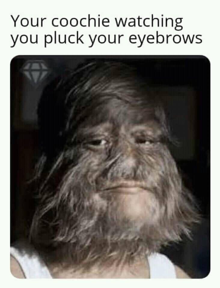 Hairy coochie - meme