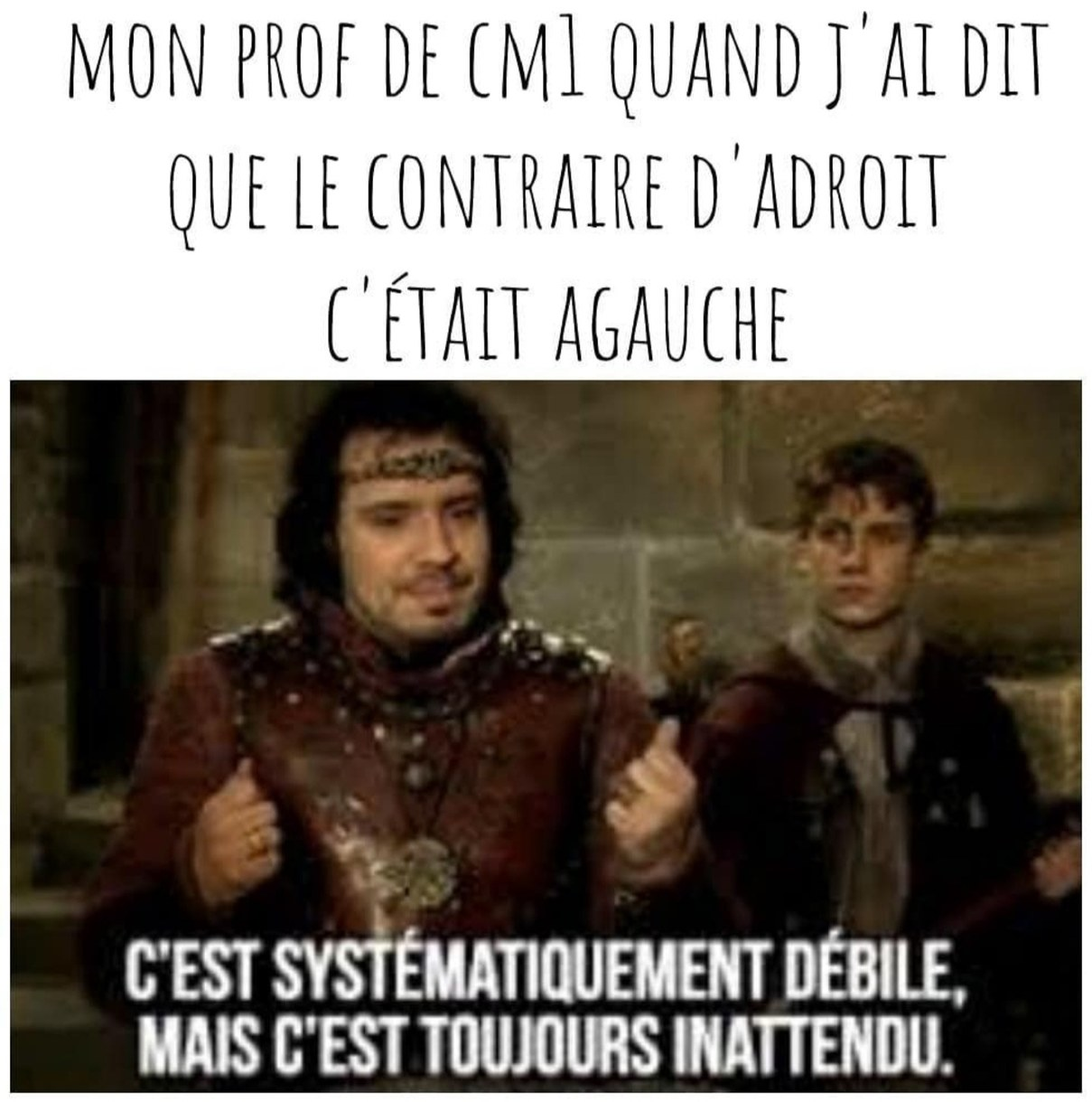 Antonyme - meme