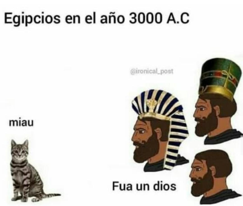Miau dijo el gato - meme