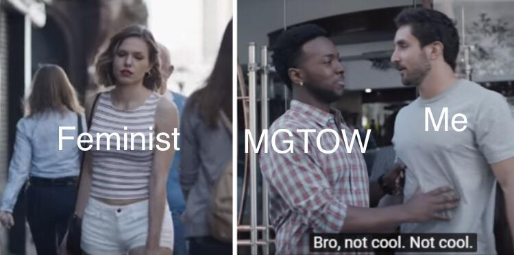 Gillette contra feministas - meme