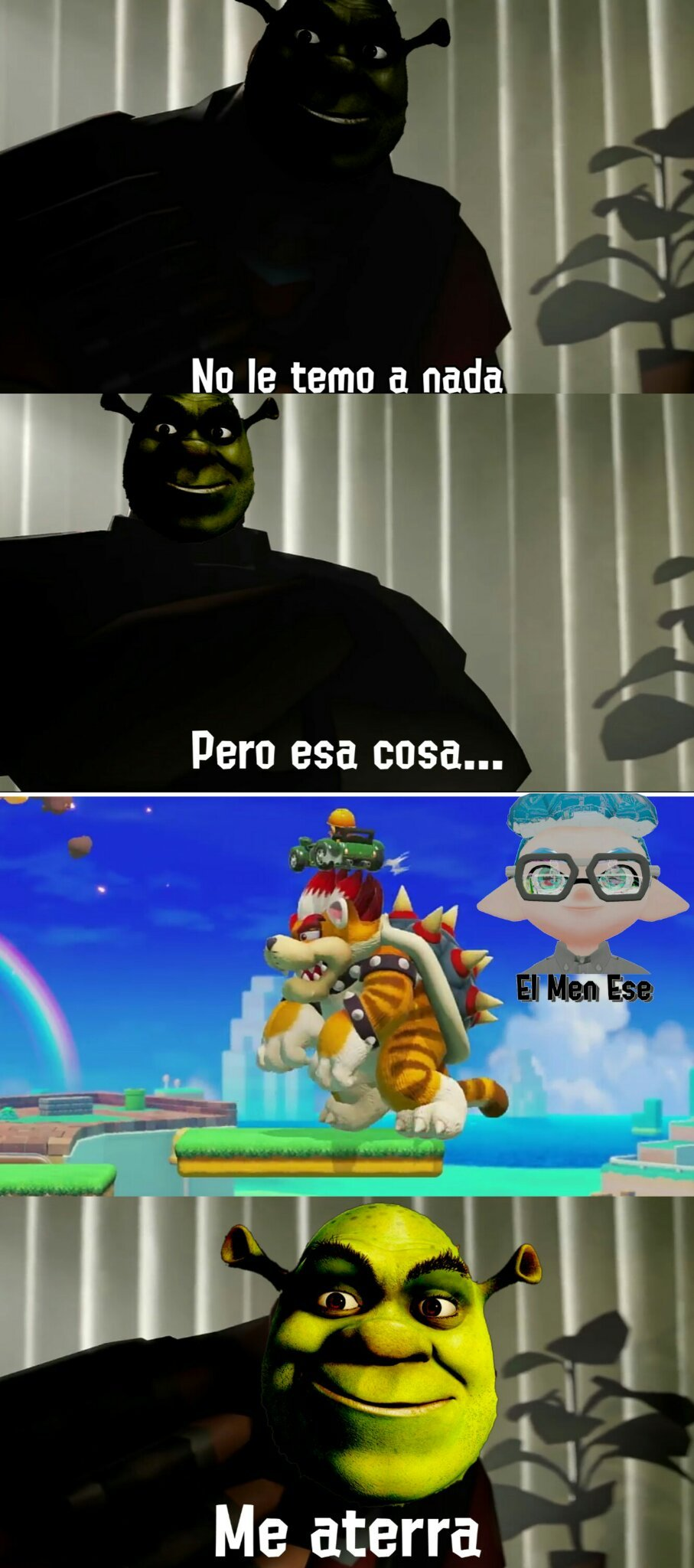 Tortuga+Gato+Mapache, Que puede salir mal? - meme