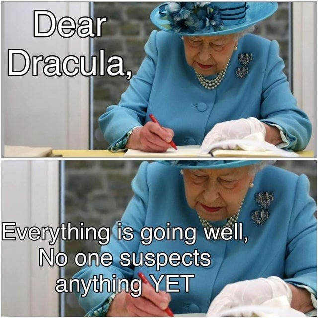 Dear Dracula, no one suspects anything yet - meme