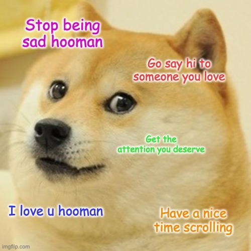 Just some wholesome doge for u today - meme