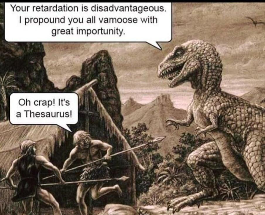 Thesaurus - meme