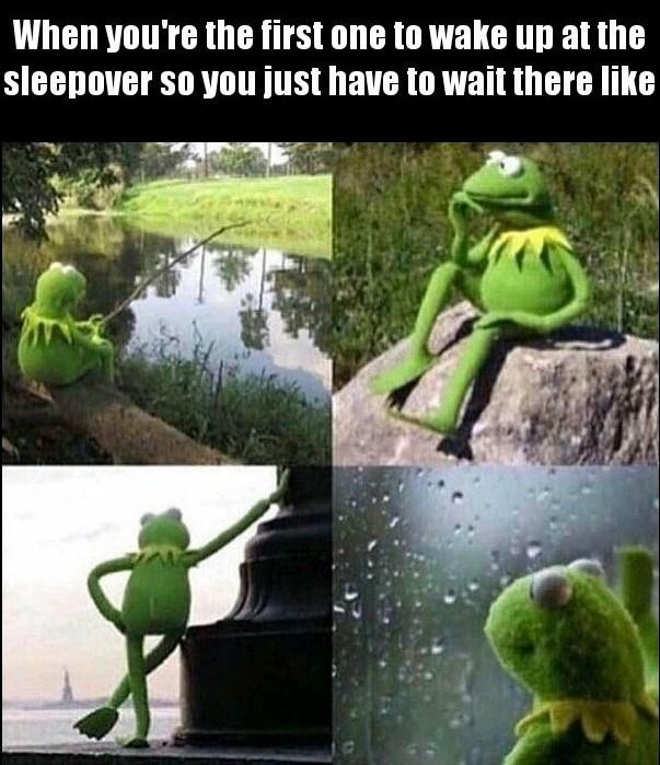 Waiting Kermit - meme