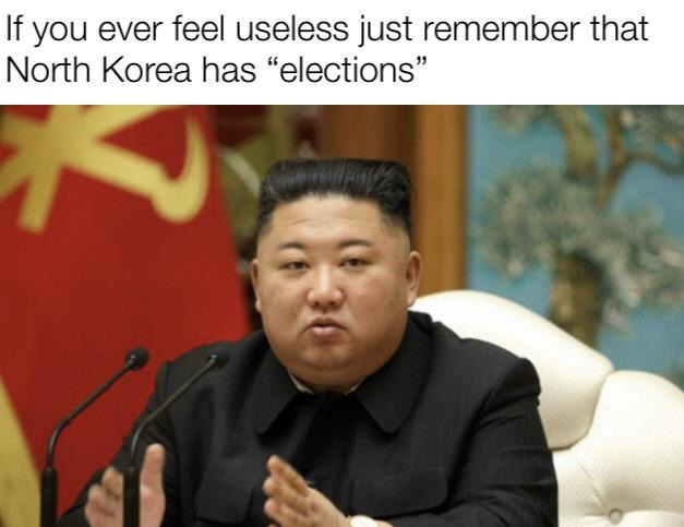 If you ever feel useless just remember that North Korea has elections - meme