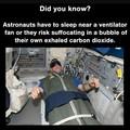 Death by falling asleep