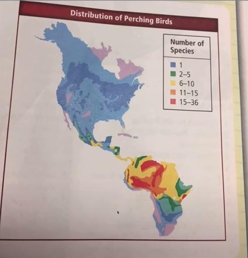 América del Sur según Estados Unidos - meme