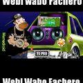 Webi Wabo fachero