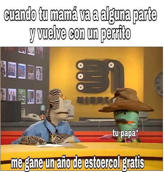 Tjtrdt - meme