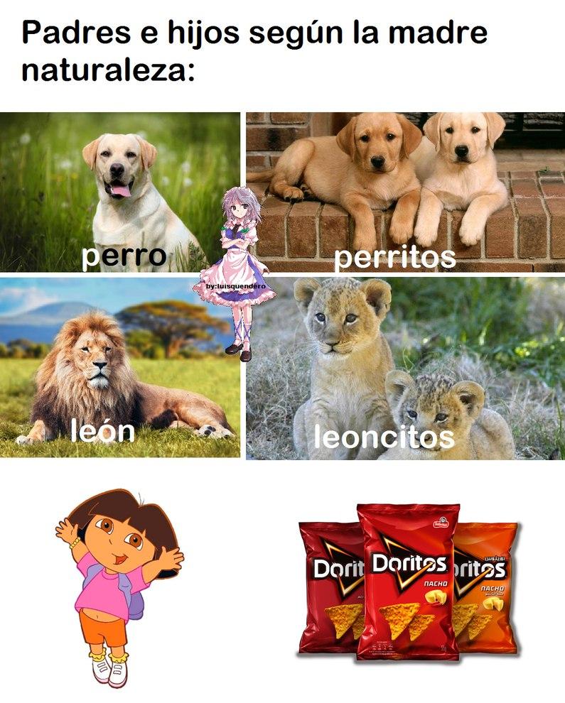 "a Sakuyita le gustan los sabor ""nacho"" mmm - meme"