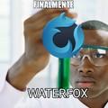 Waterfox es el lado malvado de Firefox