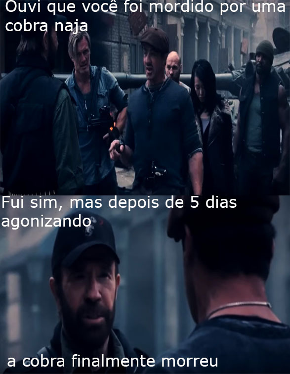 NORRIS, Chuck - meme