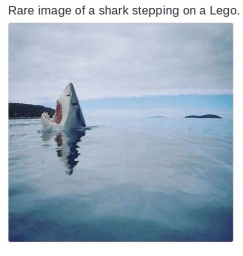 Nature in all its glory - meme