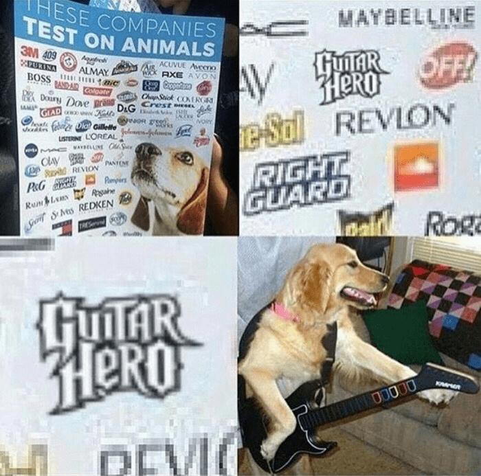 Say no to animal testing - meme