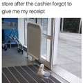 angry seagull Karen