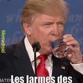 Trump boit vos larmes