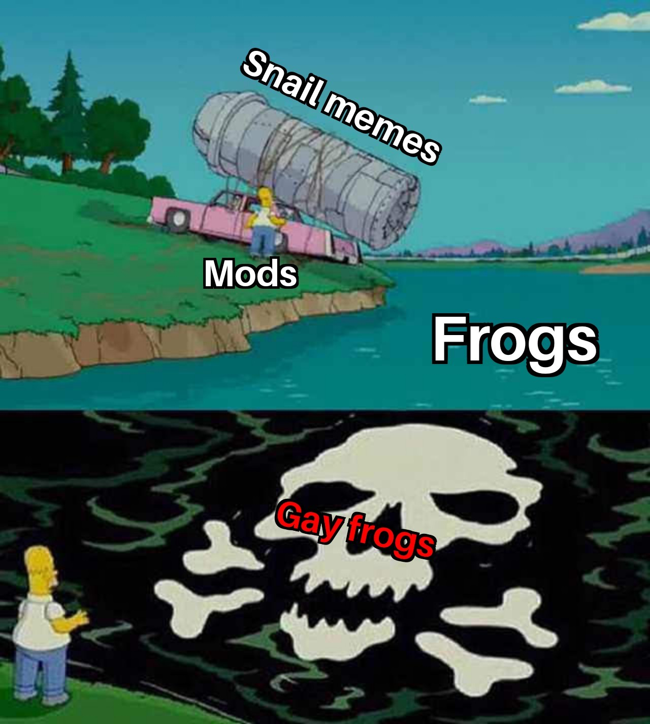Mods are turning the frogs gay - meme