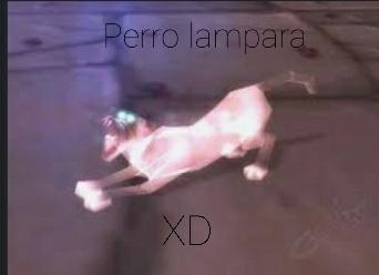 Perro lampara - meme