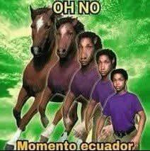 Juanisificación - meme