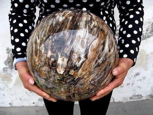 Полированная сфера окаменевшей древесины - meme