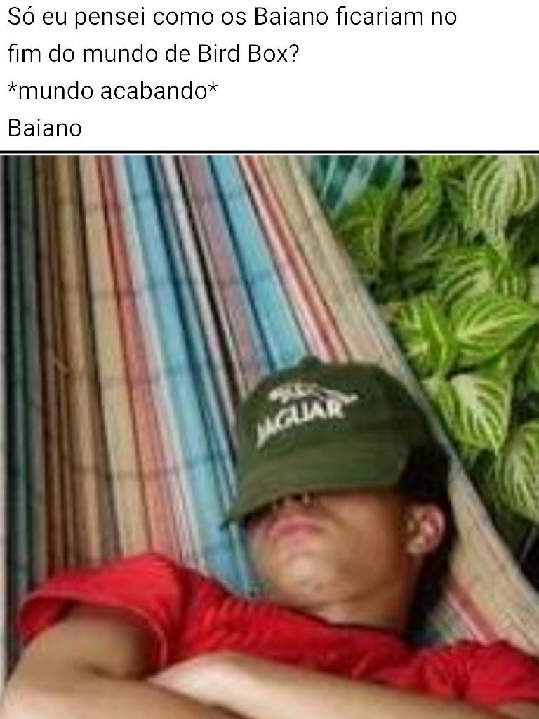 Baiano Box - meme