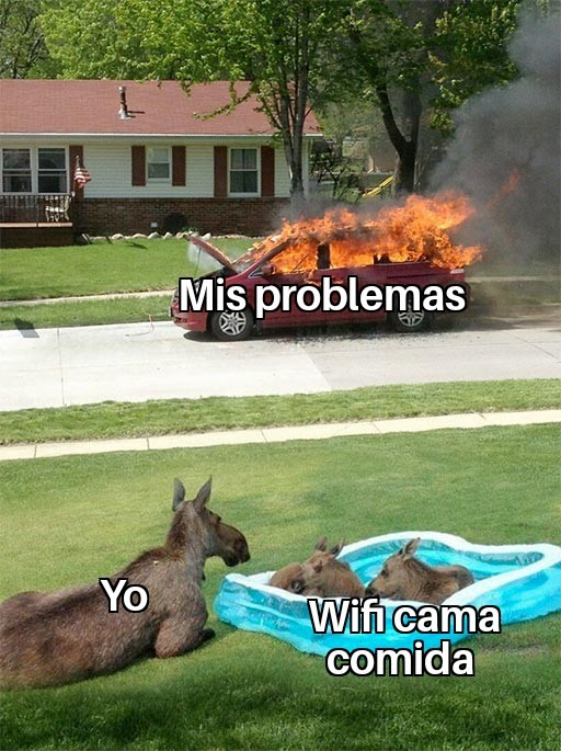 Asi es mi vida - meme