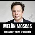 Melón Moscas