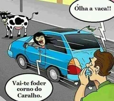 Olha a vaca! - meme